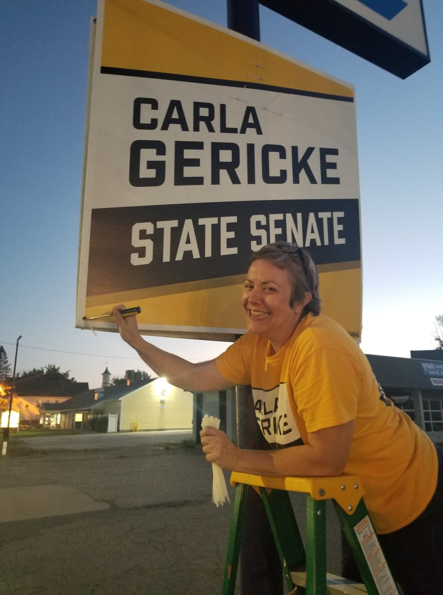 Yard Sign Mania: Request YOURS Today!